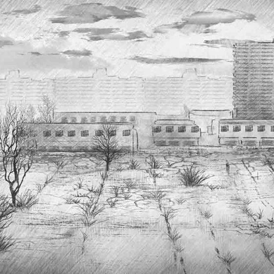 Чернобыль – мародерство, туризм и сталкеры