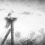 Авария на ЧАЭС: радиационное воздействие на природу и животных
