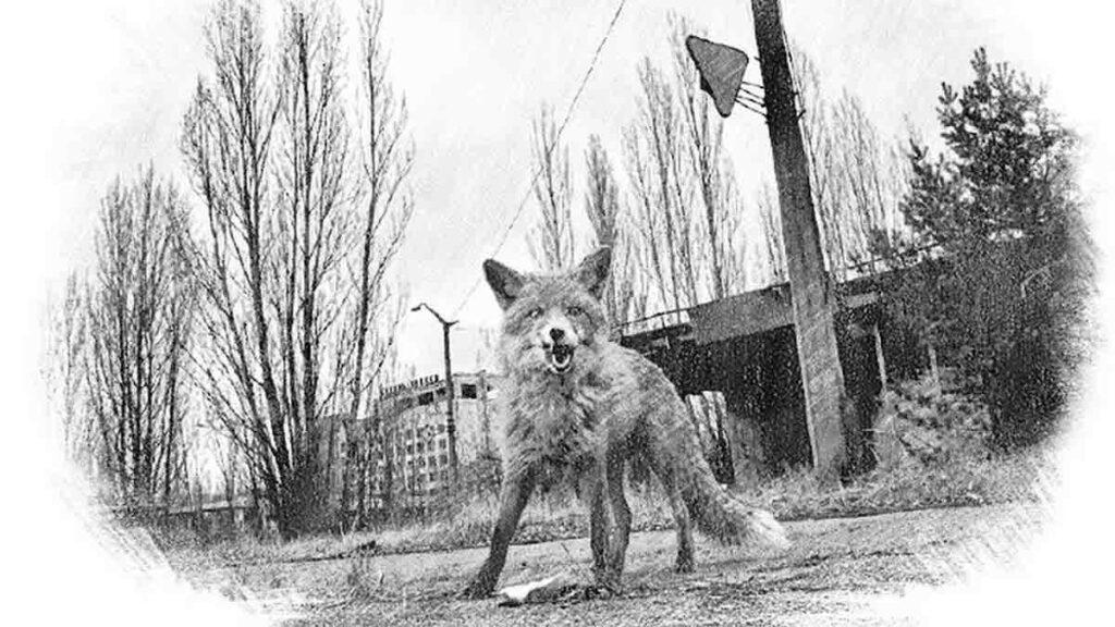 Чернобыльская Зона отчуждения —объектвсемирного наследия ЮНЕСКО